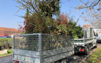 amenagement jardins roncq