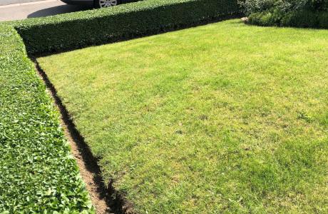 entretien jardin roncq